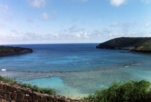 hawaii5d