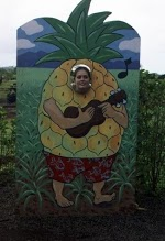 pineapplelindsay